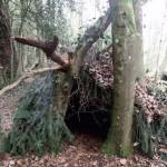Abris de survie en forêt lors d'un stage de survie