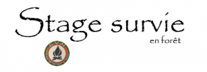 logo inscription bretagne