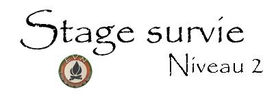 logo stage de survie niveau 2