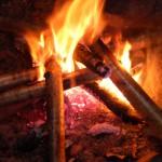 feu survie